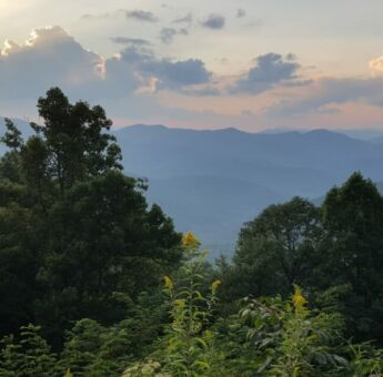 Specials, The Asheville Bed & Breakfast Association
