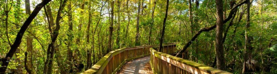 Asheville's Secret, Scenic and Secluded Bridges, The Asheville Bed & Breakfast Association